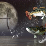 Гороскоп для мужчины – Рыбы на 2020 год